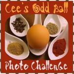 022714-odd-ball_Cee's