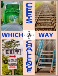 041315ww_6_Cees which way challenge