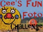 042114-cffc_fun photo challenge