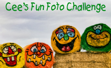 cffc_fun photo challenge new badge