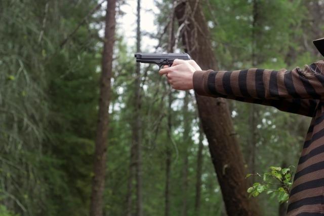 gun in hand-487965_1280