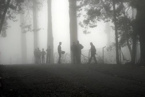 fog-594286_1280