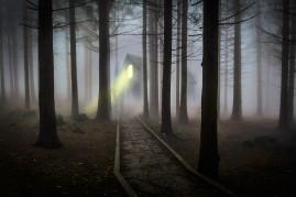foggy-545838_1920 (2)