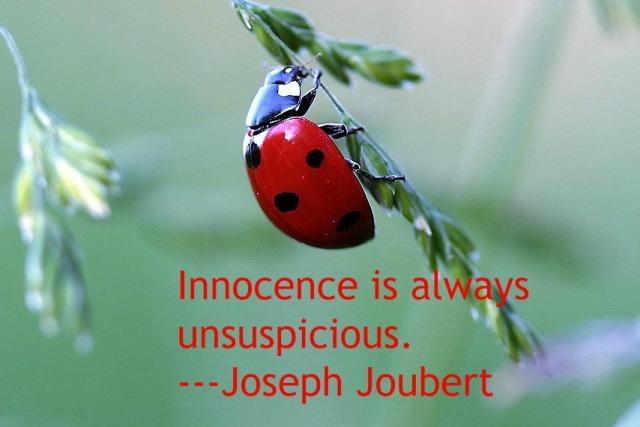ladybug-1480102_1280-quote